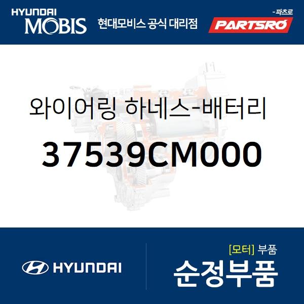 와이어링 하네스-배터리 시스템 그라운드 (37539CM000) 더뉴 코나 하이브리드 현대모비스부품몰